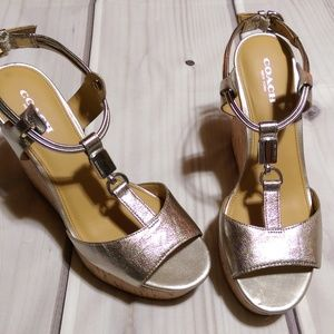 Coach • NWT Silver Linden Wedge Sandals